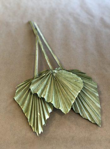 Små palmeblader Grønn
